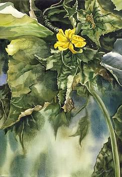Alfred Ng - squash blossom