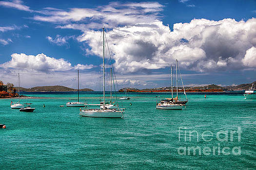 St. John Bay by Mariola Bitner