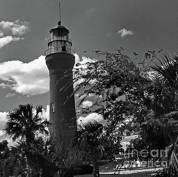 Skip Willits - ST. JOHNS RIVER LIGHTHOUSE FL