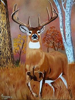 Standing Buck by Debbie LaFrance