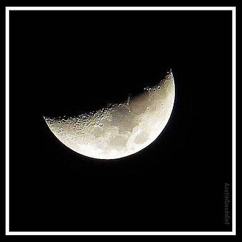 Still #dreaming Of Last Night's by Austin Tuxedo Cat