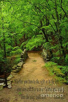 Isaiah 30 by Bob Sample