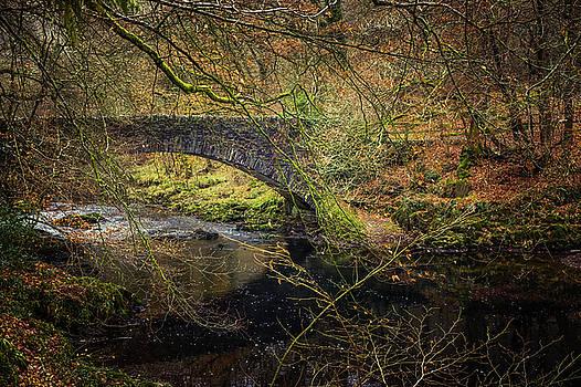Stone Bridge by David Ridley