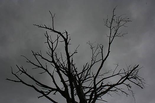 Menacing Clouds Overshadowing by Cynthia Marcopulos