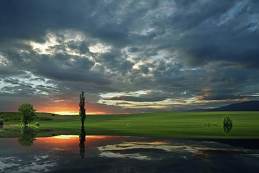 Summer Memories... by Juliana Nan