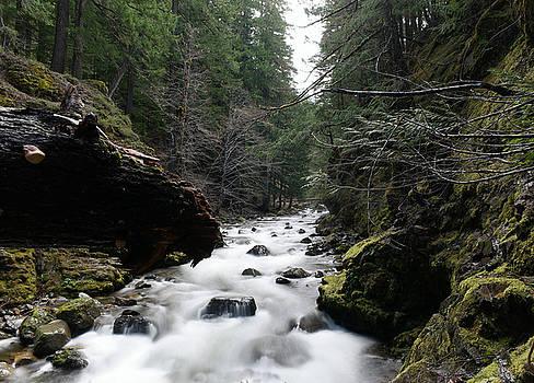 Summit Creek  by Jeff Swan