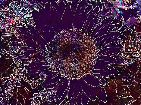 Sun Flower Flower Yellow Blossom  by PixBreak Art