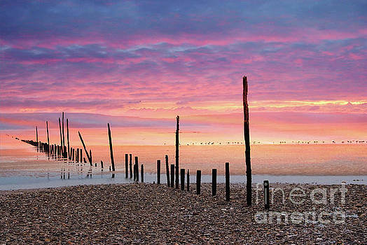Sunrise at Woodstown beach by Joe Cashin