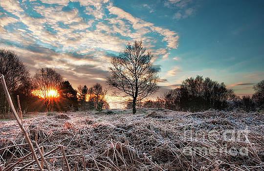 Mariusz Talarek - Sunrise in Harden