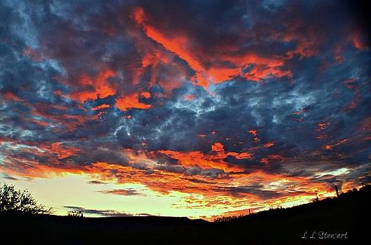 Sunrise by L L Stewart