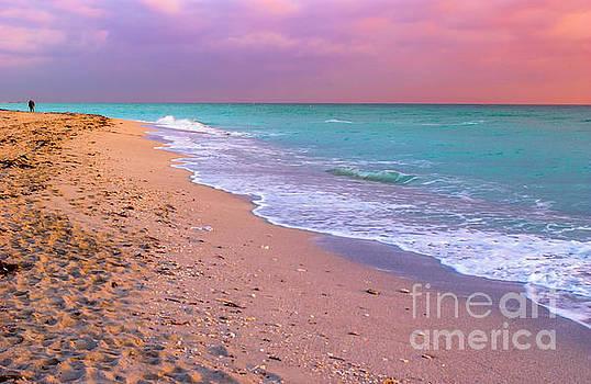 Sunrise Miami Beach by Thomas Levine
