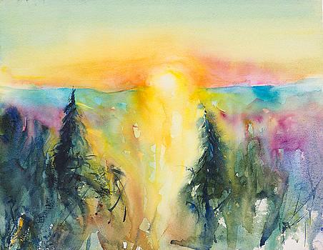 Sunrise over the Pines by Adam VanHouten