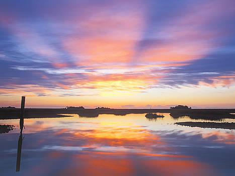 Sunrise Sunset Image Art - Monday Monday by Jo Ann Tomaselli