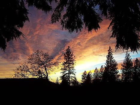 Sunset at Flintrock Creek by Ronald Ataide