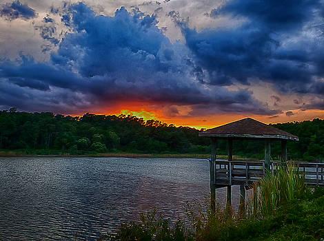 Sunset Huntington Beach State Park by Bill Barber