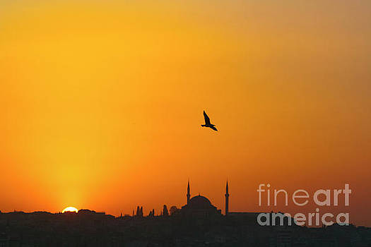 Sunset over Istanbul by Jacky Telem