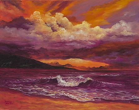 Sunset Over Lanai by Darice Machel McGuire