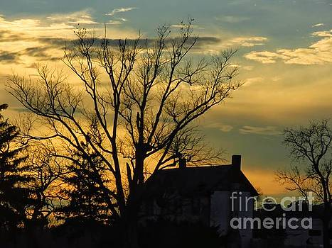 Sunset Silhouette by Rrrose Pix