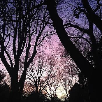 #sunset by Stephanie Tomlinson
