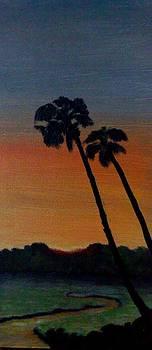 Sunset by Zak Eissa