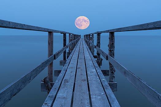 Super Moon by Nebojsa Novakovic