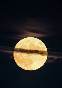 Supermoon by Michael Nowotny