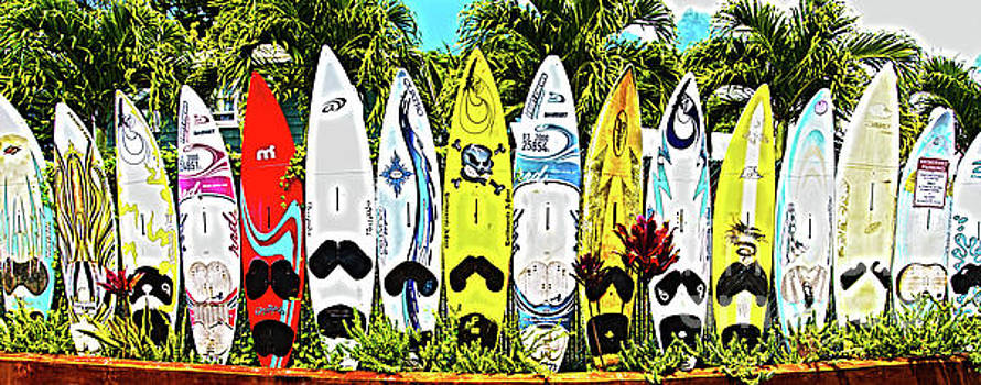 Surfboards in Paia Maui Hawaii by ELITE IMAGE photography By Chad McDermott