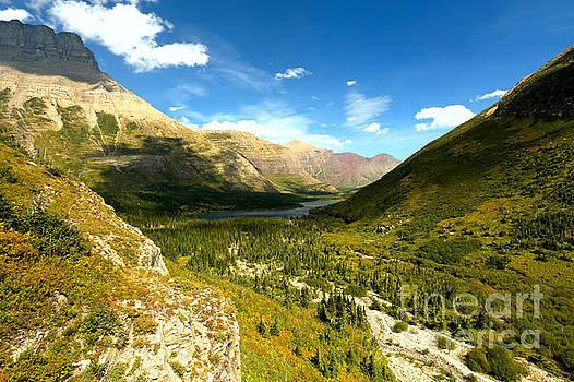 Adam Jewell - Swiftcurrent Pass Trail View