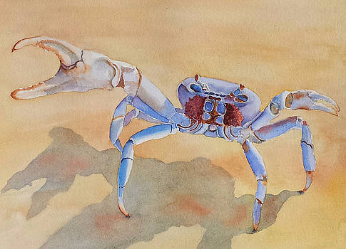 Talk to the Claw by Judy Mercer