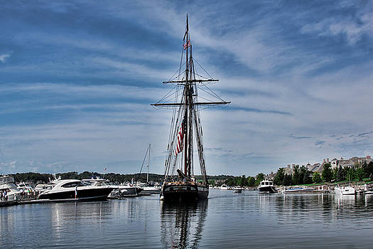 Tall Ship Lynx by Pat Cook