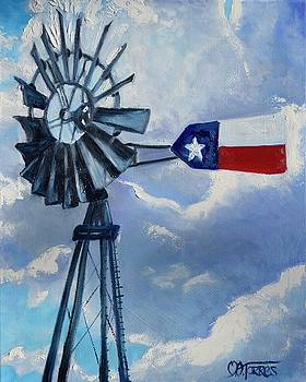 Texas Windmill by Melissa Torres