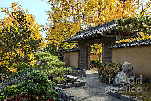 The beautiful fall colors of the Japanese Gardens by Jamie Pham