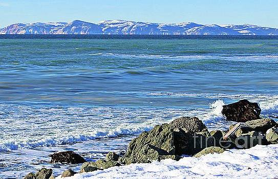 The Cold North Atlantic by Barbara Griffin