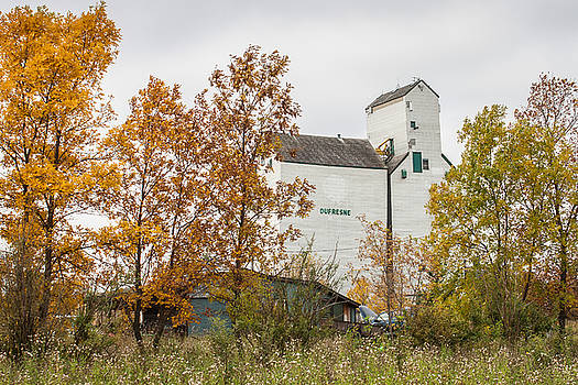 The Dufresne Grain Elevator by Steve Boyko
