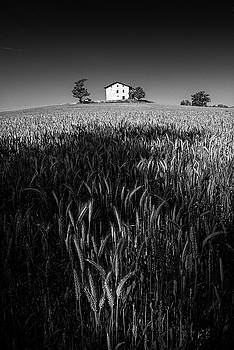 The farm by Livio Ferrari