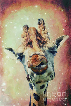 The giraffe by Angela Doelling AD DESIGN Photo and PhotoArt