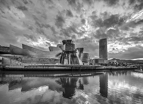 The Guggenheim Museum Bilbao  by Ayhan Altun