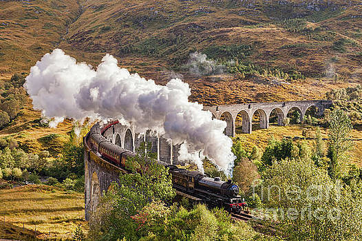The Jacobite, Glenfinnan Viaduct by Colin and Linda McKie