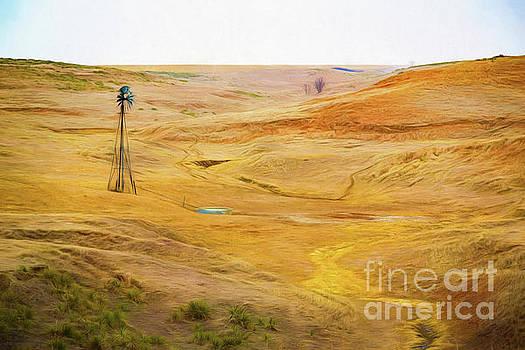 Jon Burch Photography - The Land