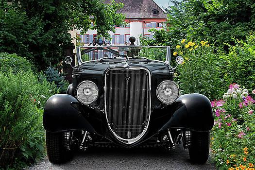 The Old Black One by Joachim G Pinkawa