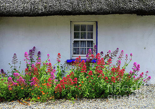The Old thatched home by Joe Cashin