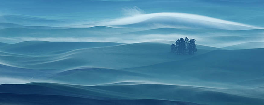 The Palouse During the Blue Hour by Donna Caplinger