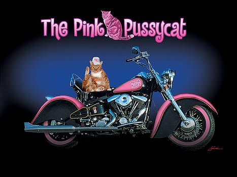 The Pink Pussycat by Harold Shull
