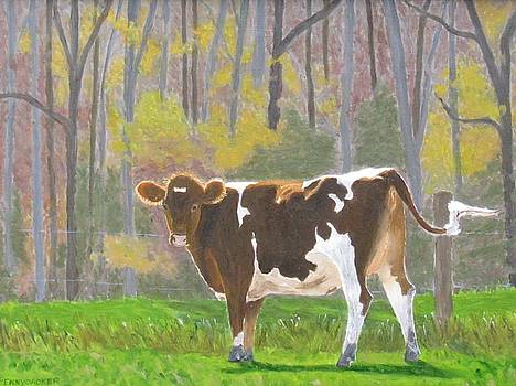 The Pirouetting Heifer by Barb Pennypacker