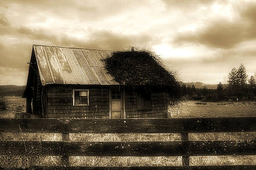 The Shack by Tyra OBryant