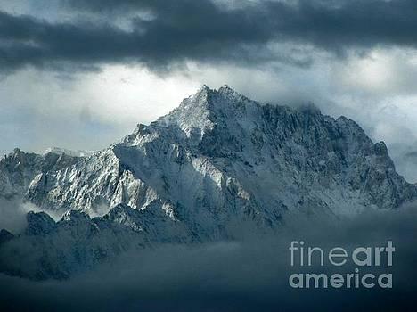 The Sierra Nevadas by Jens Larsen