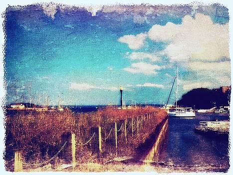 The Summer Wind V by Aurelio Zucco