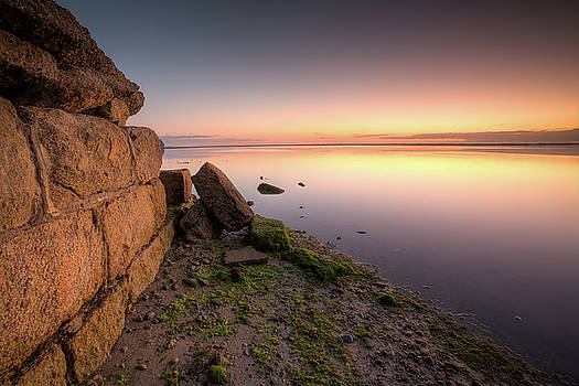 The Wall by Brad Grove