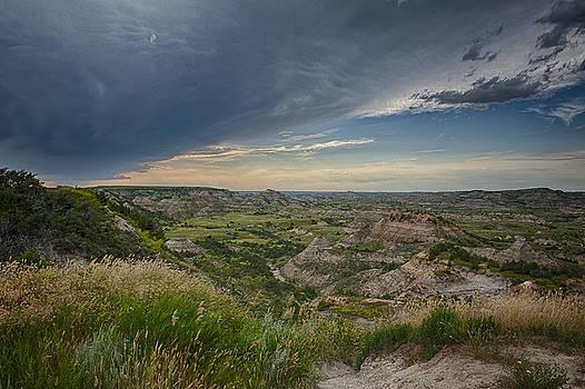 Theodore Roosevelt National Park  by Kevin Blackburn
