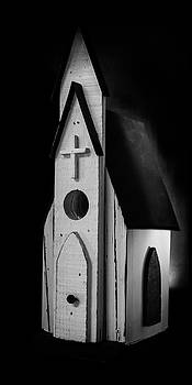 Guy Shultz - This Church is for the Birds